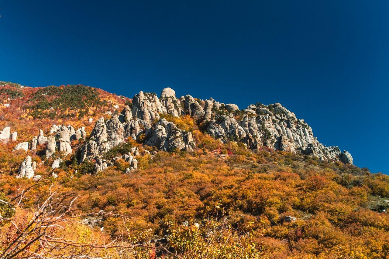Осень в Крыму © Фото с личной страницы Евгения Маханько во «ВКонтакте»