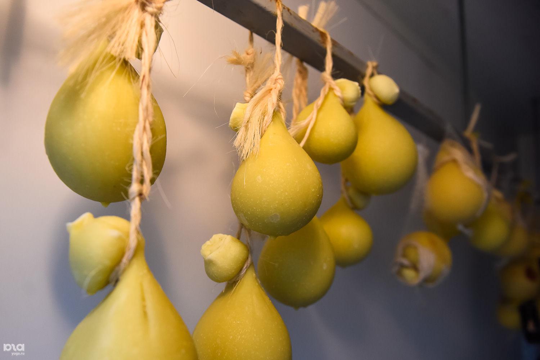 Сыр качокавалло вызревает в холодильнике