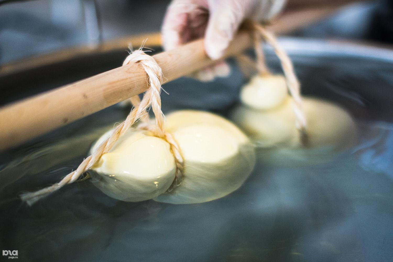 Изготовление твердого сыра качокавалло