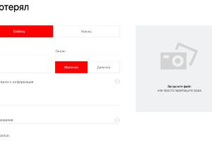 Скриншот формы для заполнения с сайта yandex.ru/petfinder ©Юга.ру