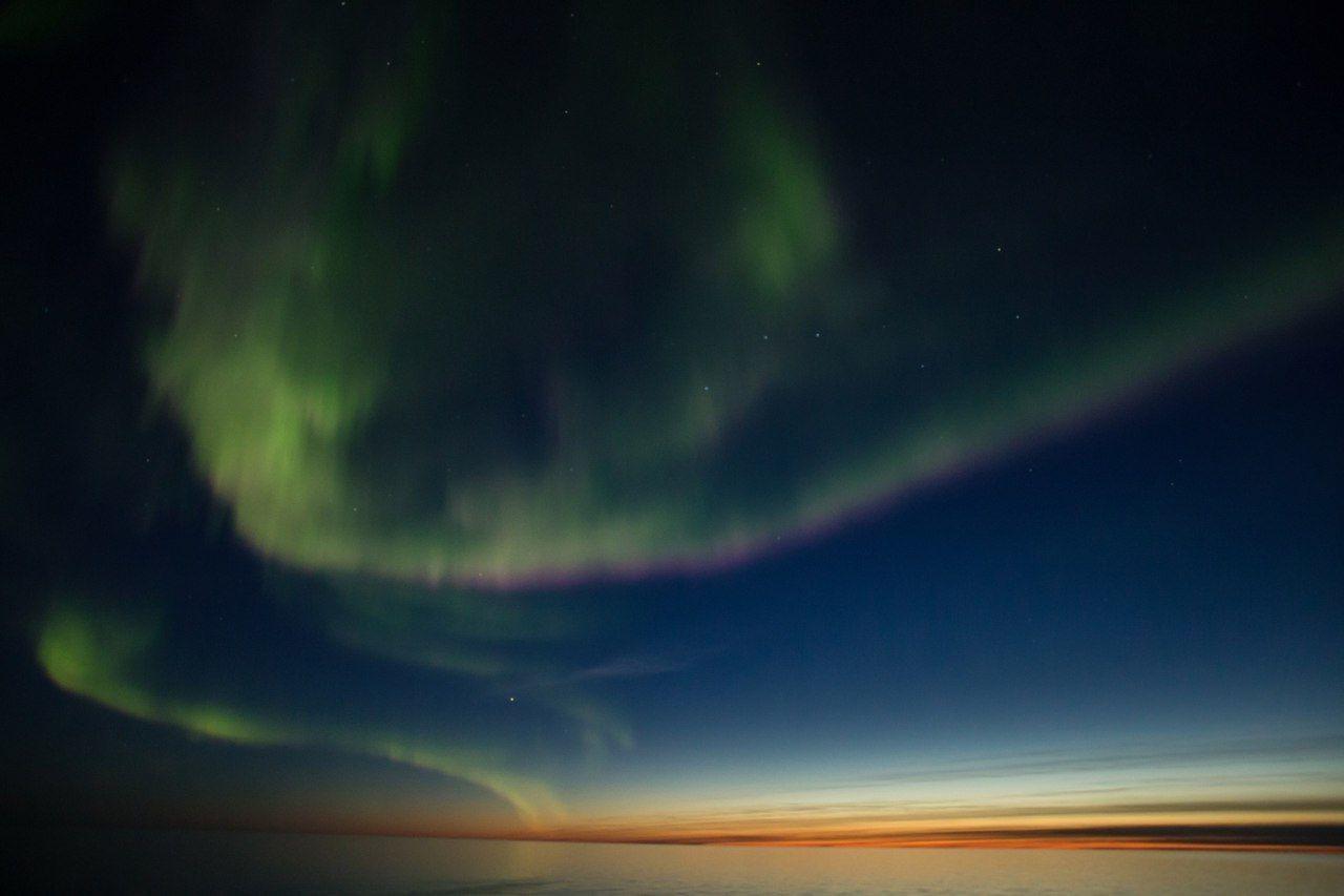 """© Фото из группы «Природный заповедник """"Остров Врангеля""""» во «ВКонтакте», vk.com/ostrovwrangelya"""