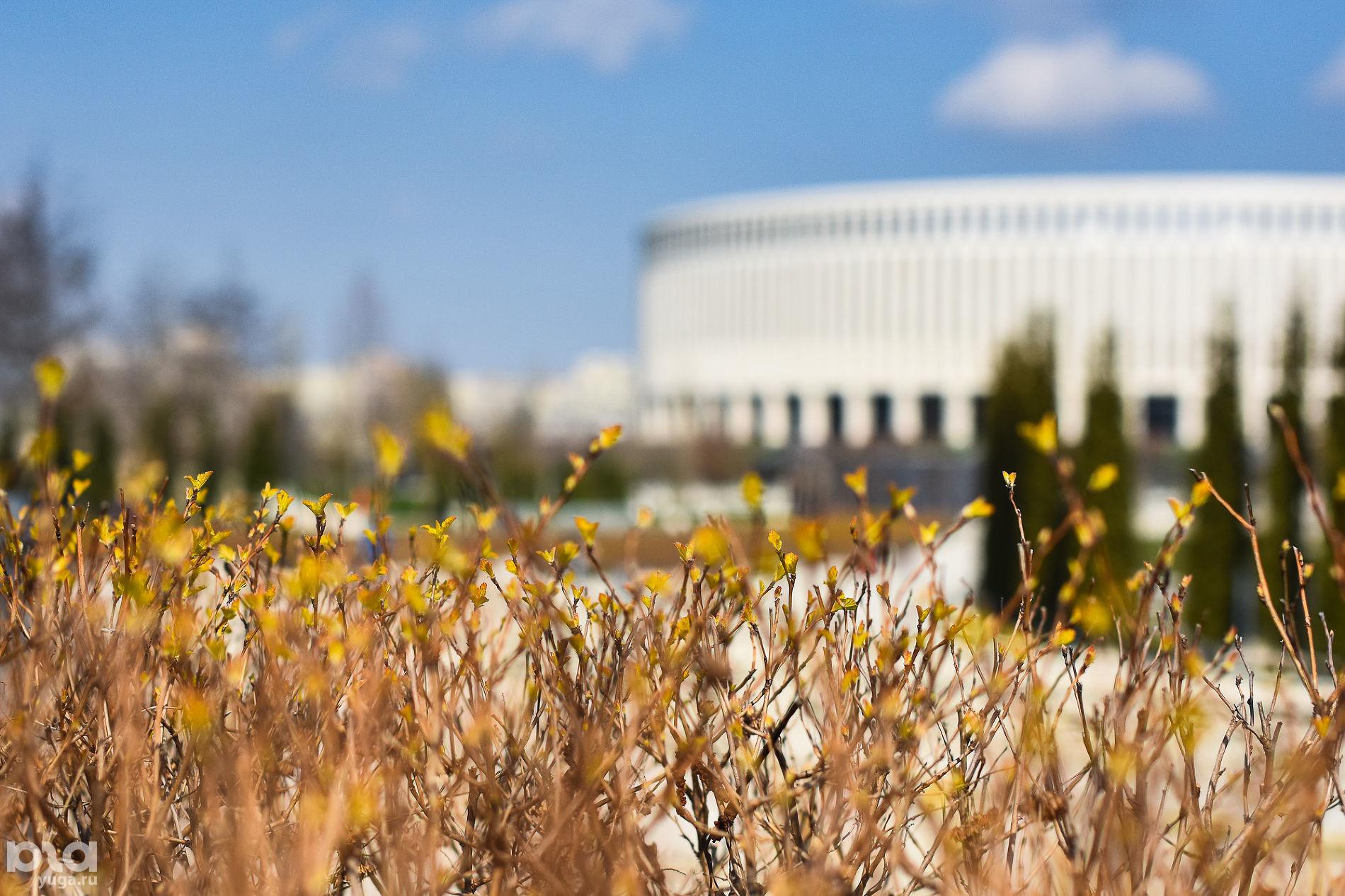 Стадион «Краснодар» © Фото Елены Синеок, Юга.ру