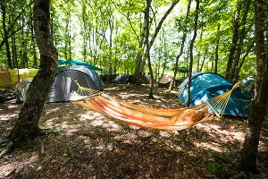 Лагерь фестиваля ©Фото Елены Синеок, Юга.ру