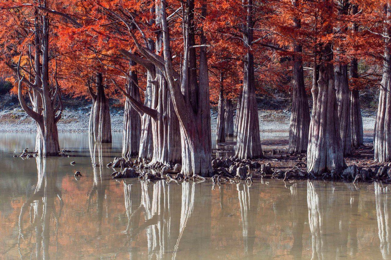 Кипарисовое озеро, Сукко © Фото с личной страницы Евгения Маханько во «ВКонтакте»